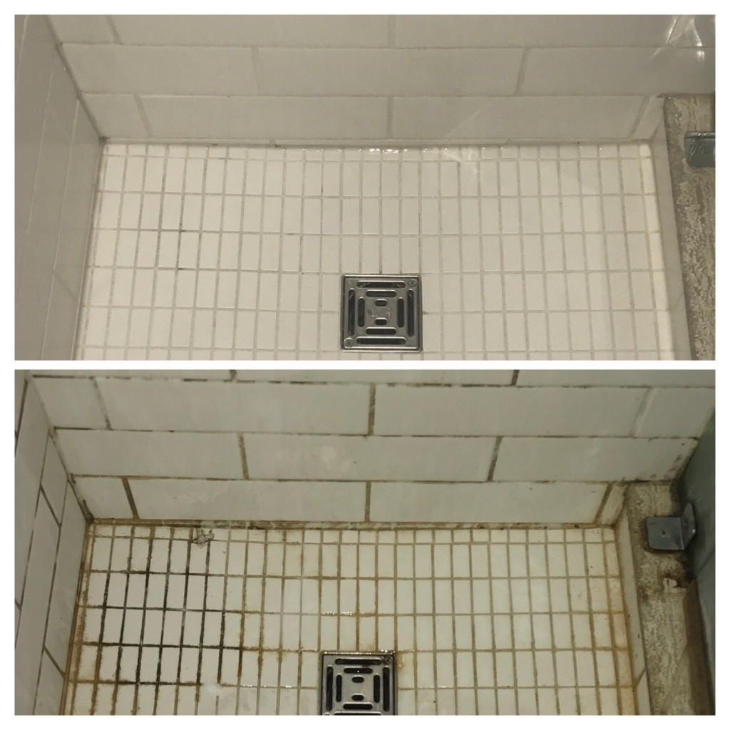 Shower mold removal service Toronto