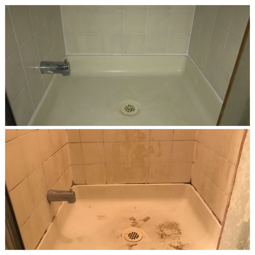 Cleaning shower mold Toronto