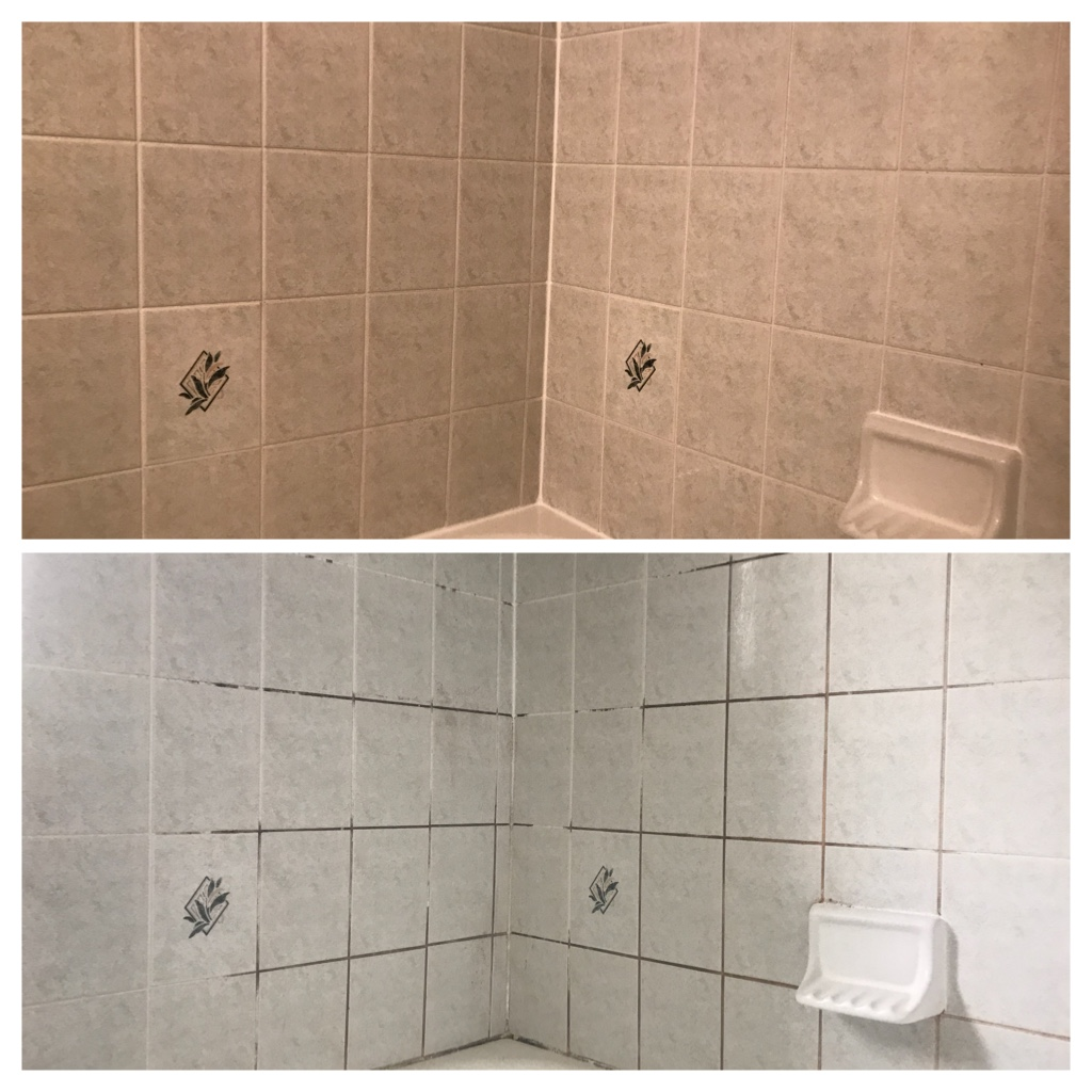 Shower mold cleaning Richmond hill